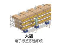 大福 Daifuku电子标签拣选系统