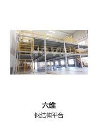 六维钢结构平台
